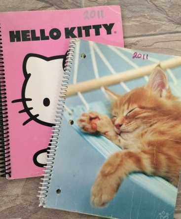 First Notebooks