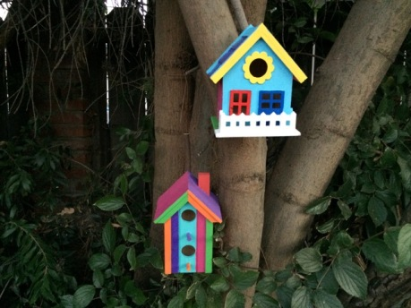 birdhouses in tree