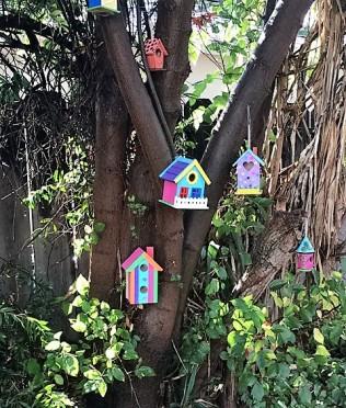 birdhouses-after-rain