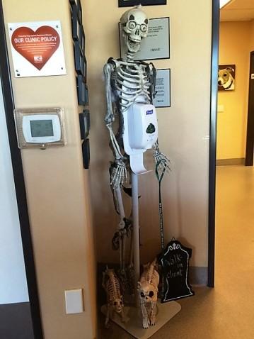 skeleton-at-vet