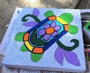 turtle-ip-2