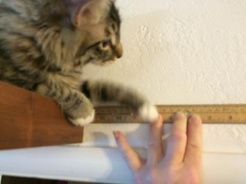 a-measuring