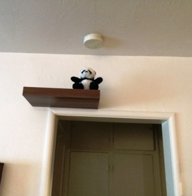 a-panda-on-shelf