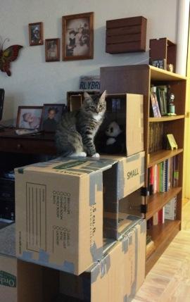 boxes-10
