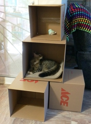 boxes-3