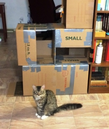 boxes-8