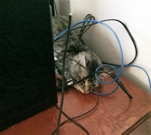 playing-with-wires