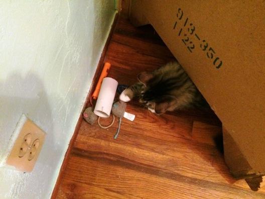 under-nightstand