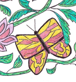 butterfly-detaile-1