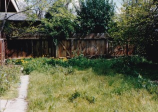 back-yard-fence