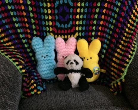 panda-with-peeps