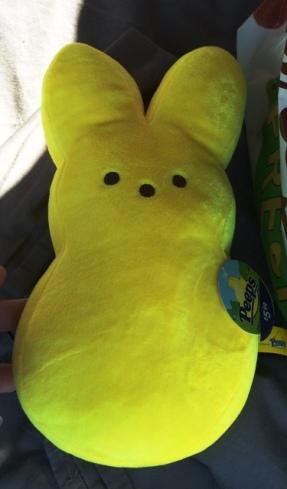 yellow-peep