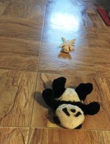 aliens abducting panda
