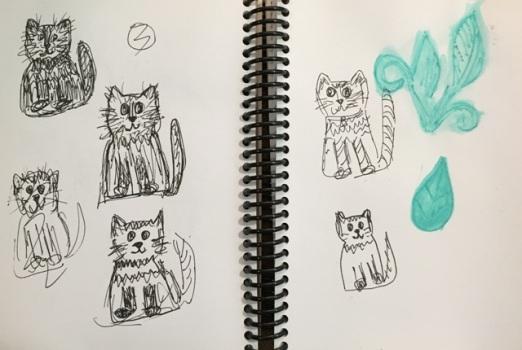 practice cats