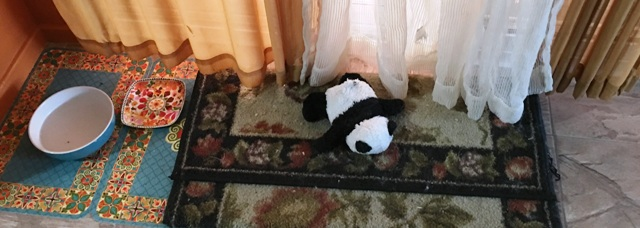 panda on flying carpet