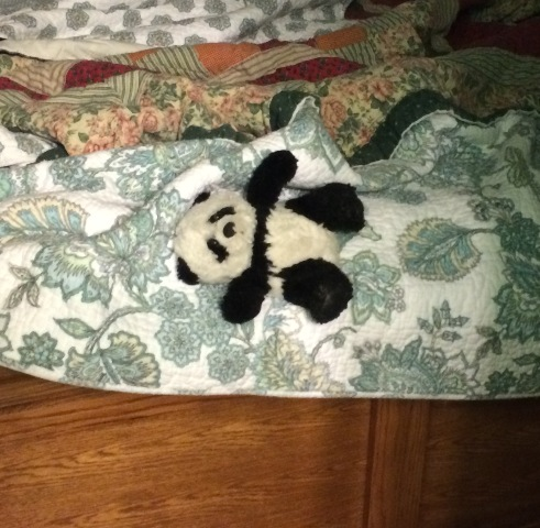 panda on footboard