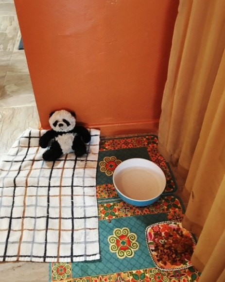 panda on towel