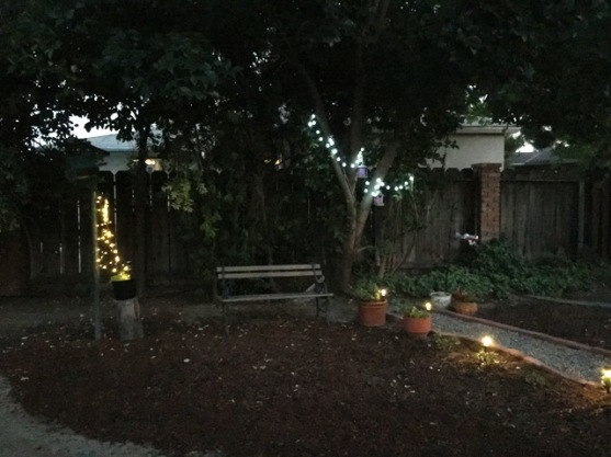 back yard lights