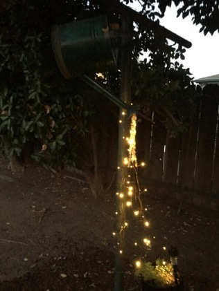 solar lights watering can