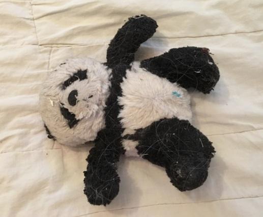 Panda needs bath