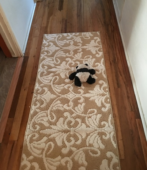 panda on rug in hall