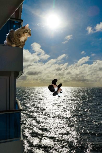 falling off ship