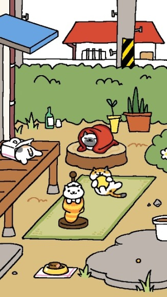 yard cats
