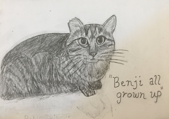 Benji erased