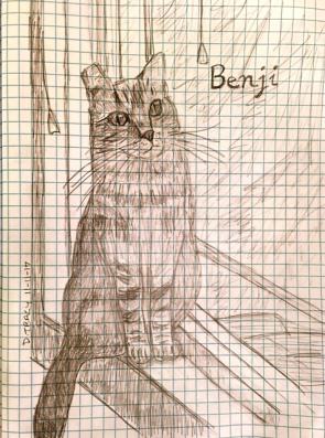 Benji on graph paper