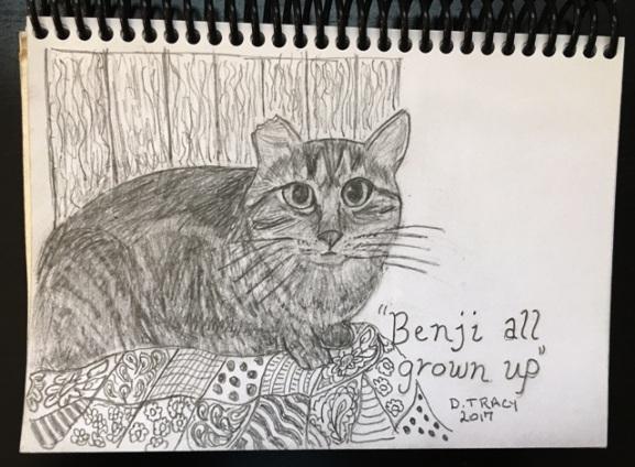 Benji on quilt 2