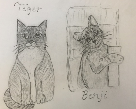 Tiger and Benji drawing