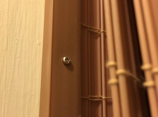 tiny screw