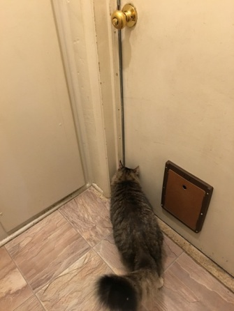 looking at door