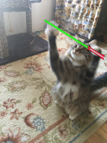 overhead saber2