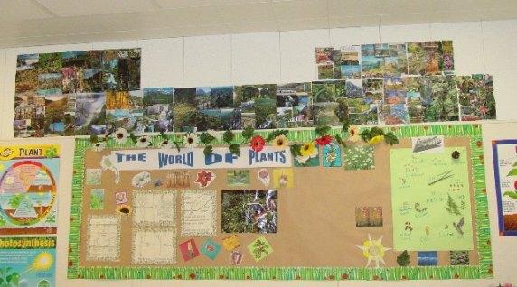 plant board 05