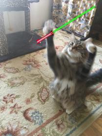 twirling saber2