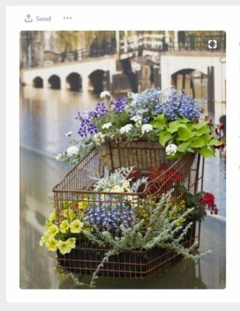 cart with plants pinterest