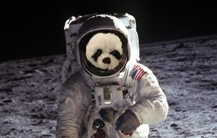 moon-landingpanda2