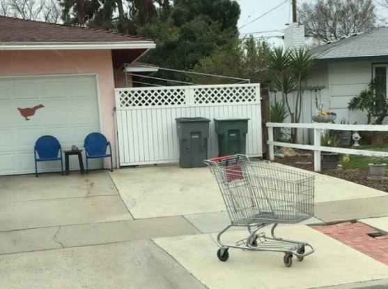 shopping cart 1