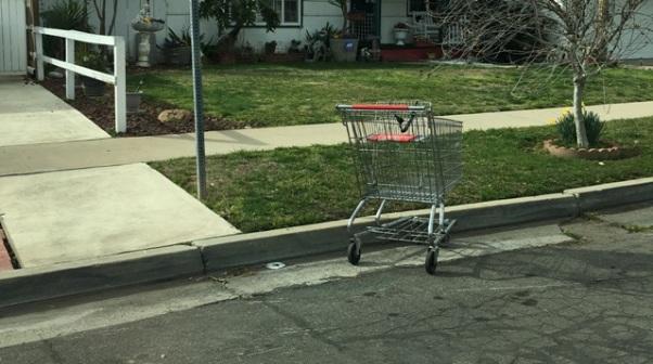 shopping cart 3