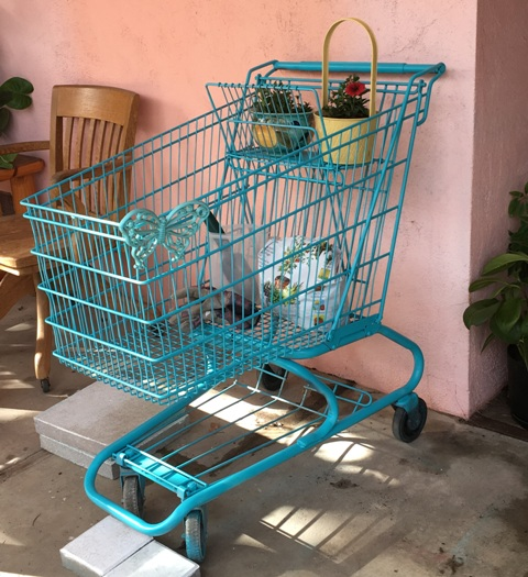 cart with items