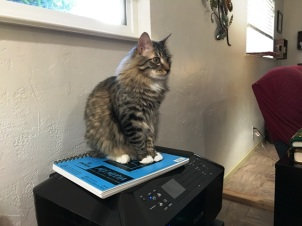 on printer