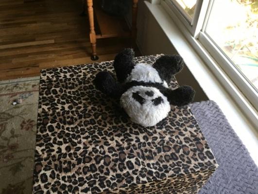 panda on leopard print