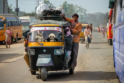 rickshaw ride2