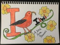 Iiwi bird