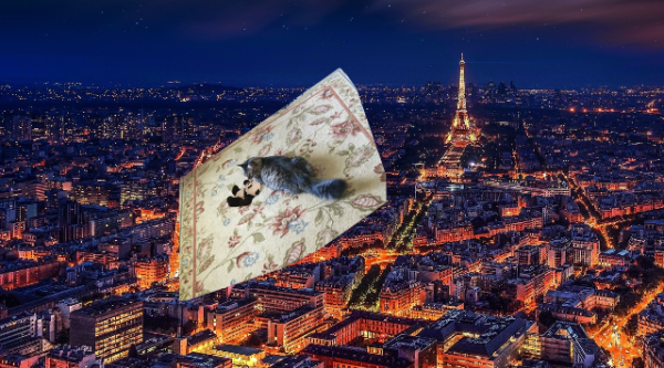 leaving Paris small