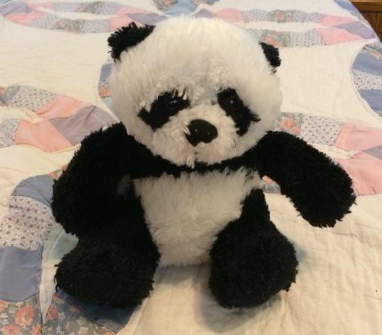 missing panda