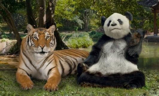 panda and tiged ad small