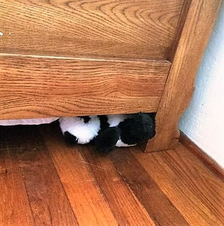 panda under bed