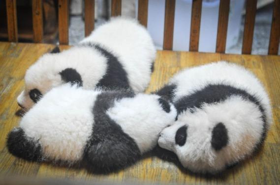 sleepingwith friends